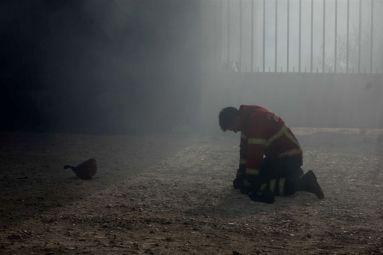 https://www.jn.pt/nacional/galerias/interior/as-imagens-do-pior-dia-do-ano-dos-incendios-8845346.html